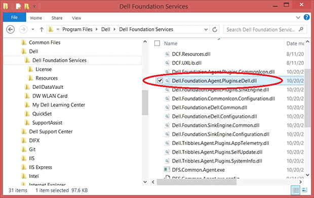 Delete Dell.Foundation.Agent.Plugins.eDell.dll