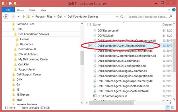 Delete Dell.Foundation.Agent.Plugins.eDell.dll