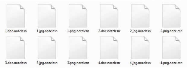 Hostage files labeled with the weird .nozelesn extension