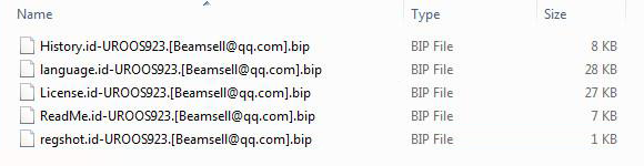 Encrypted files with the .bip extension