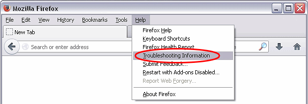Firefox Troubleshooting Information interface