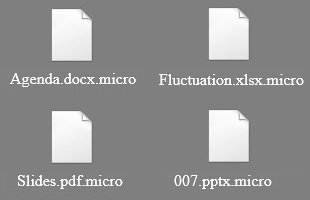 Inaccessible files with .micro extension